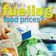 What's fueling food prices? (part 1 of 4)