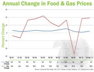 Annual Change in Food and Gas Prices