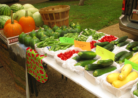 Fresh vegetables from Pruitt Farm
