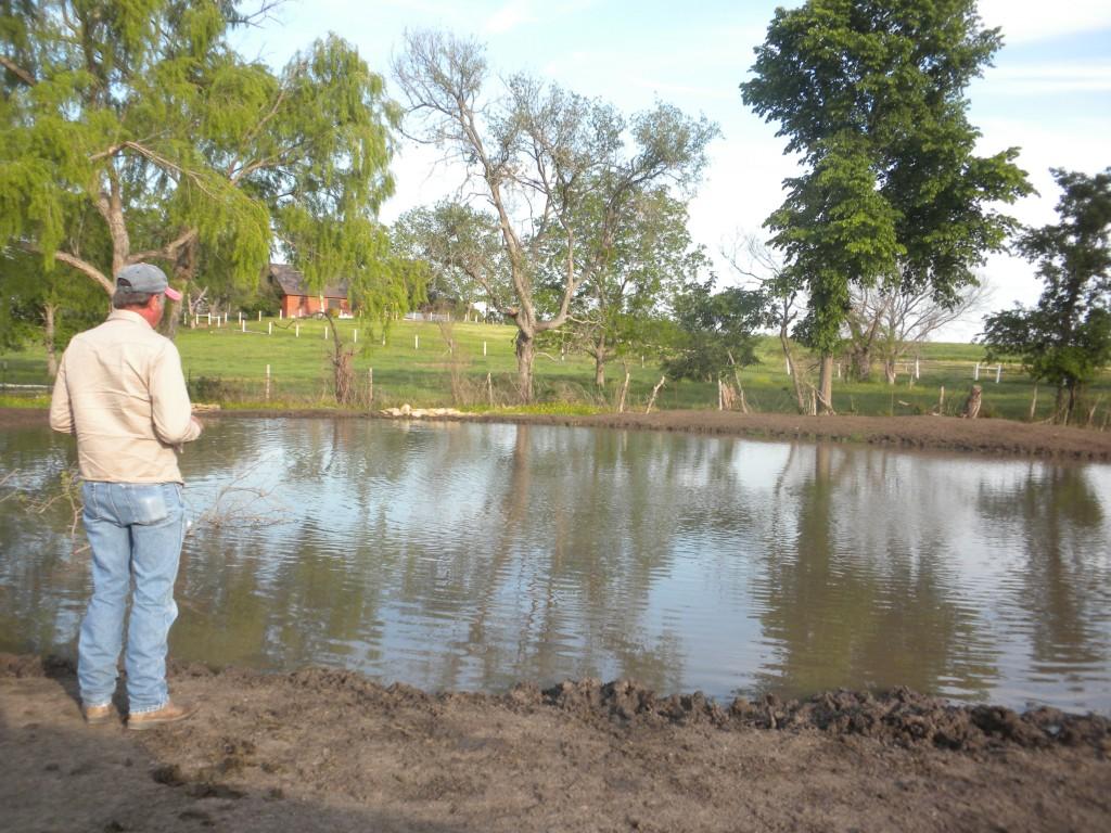 Stock pond 2012