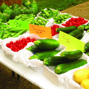 Buy local movement - Texas farmer's markets