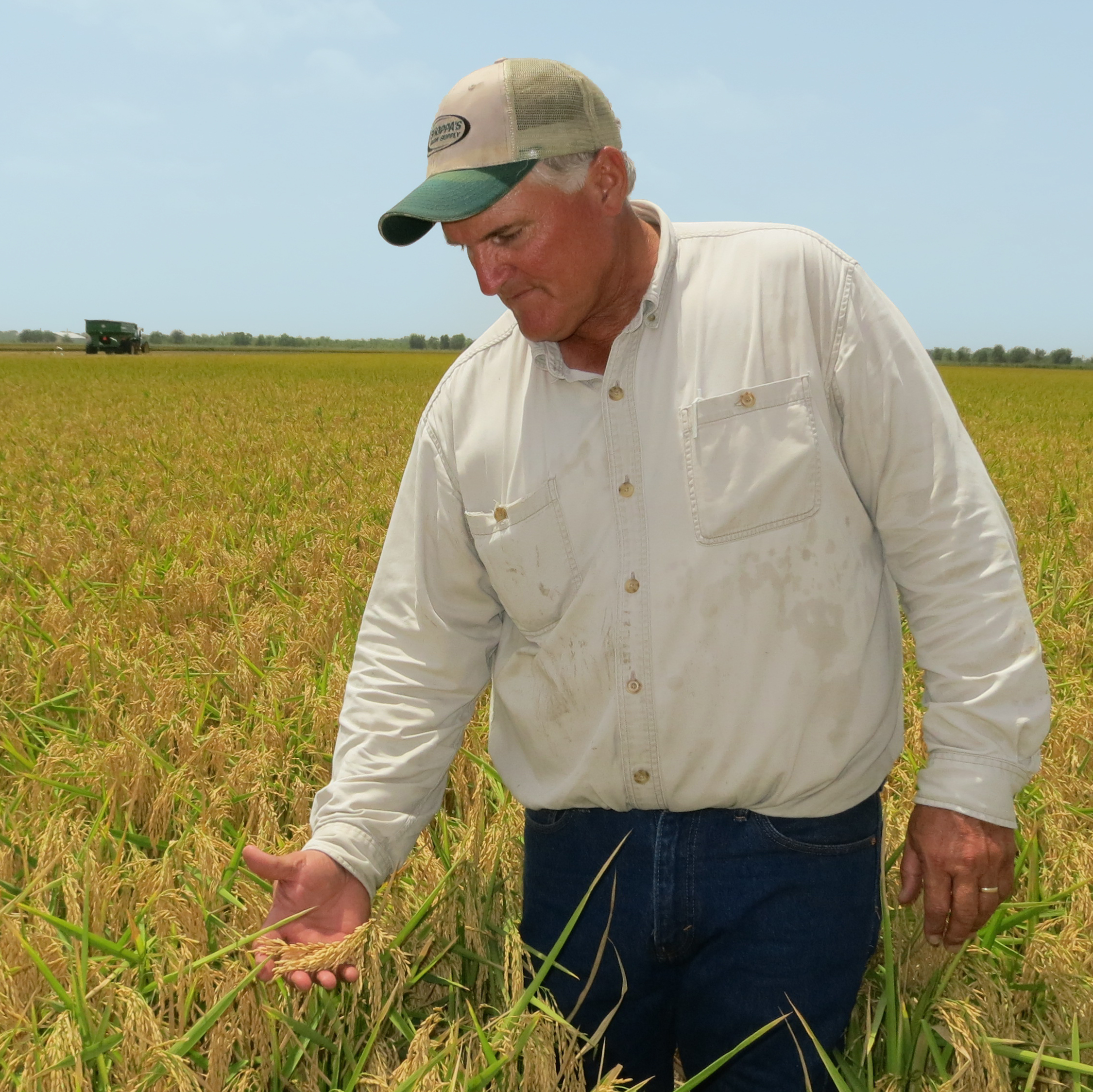 Texas rice farmer Curt Mowery