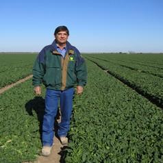 Meet a Texas spinach farmer: Ed Ritchie
