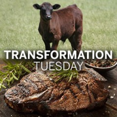 Transformation Tuesday: Steer to steaks