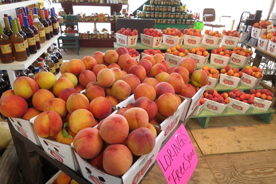 Peach display at Efurd Orchards