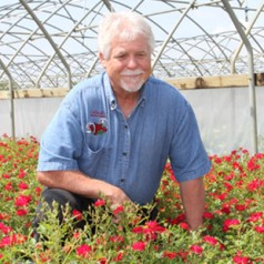 Meet a Texas rose farmer: Mark Chamblee