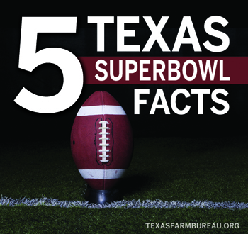 TexasSuperbowlFacts_Blog