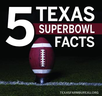 TexasSuperbowlFacts_Blog