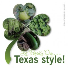 4 green Texas foods for St. Patrick's Day