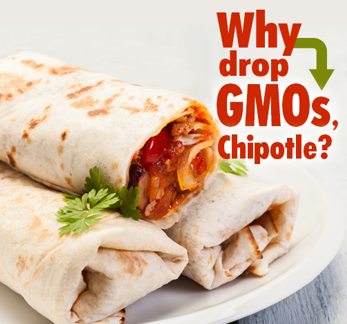 Chipotle Drops GMOs