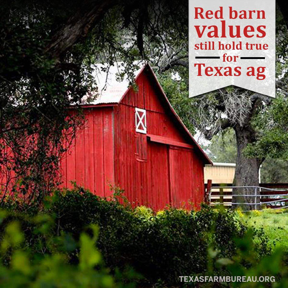 RedBarnValues_texasAg