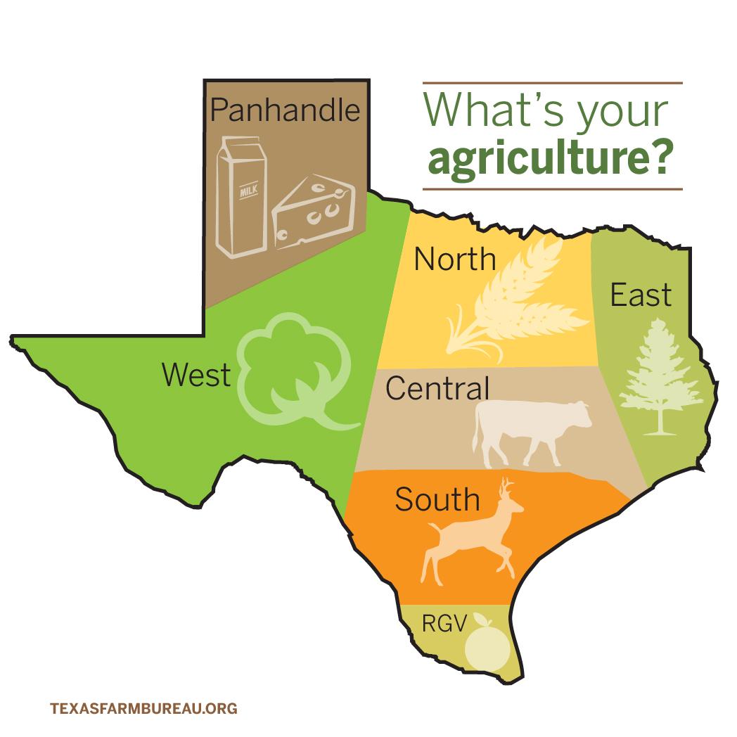 StateMap_TexasAgriculture