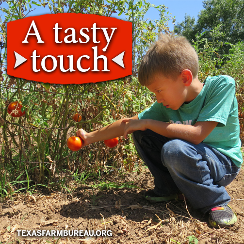 Kids Pick fruits and vegetables