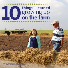 10 things I learned growing up on the farm