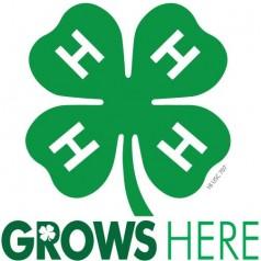 4-H grows Texas