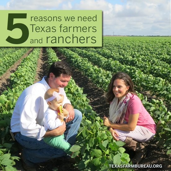 Five reasons we need Texas farmers and ranchers