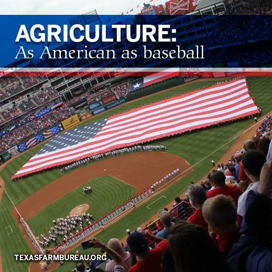 American_as_Baseball