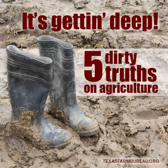 Dirty truth on agriculture
