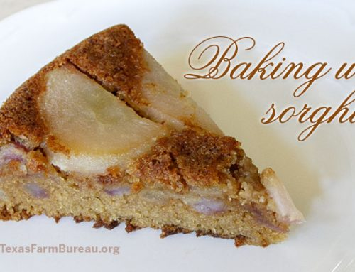 Pear Skillet Cake with Sorghum Flour