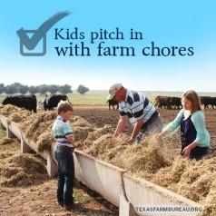 Summertime learning on the farm