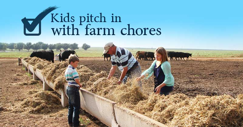 Farm Chores