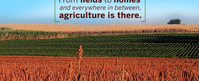 Agriculture is everywhere