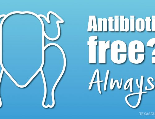 E-I-E-I-Ohhhh? 5 truths about antibiotics.