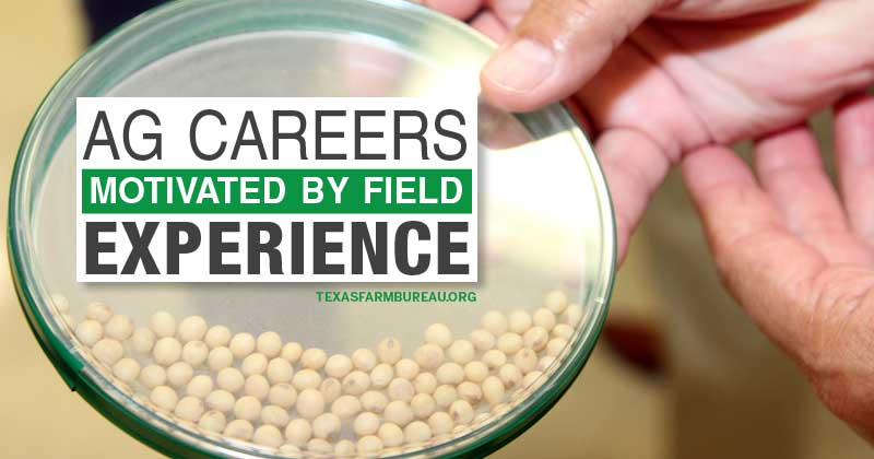 motivation for ag careers can come from field experience