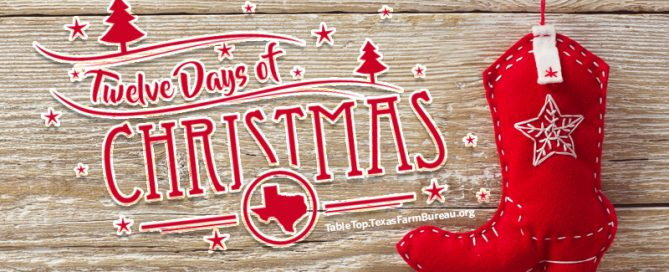 My Texan 12 Days of Christmas