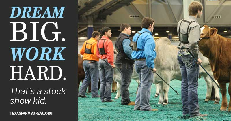 Stock Show kids work hard and dream big