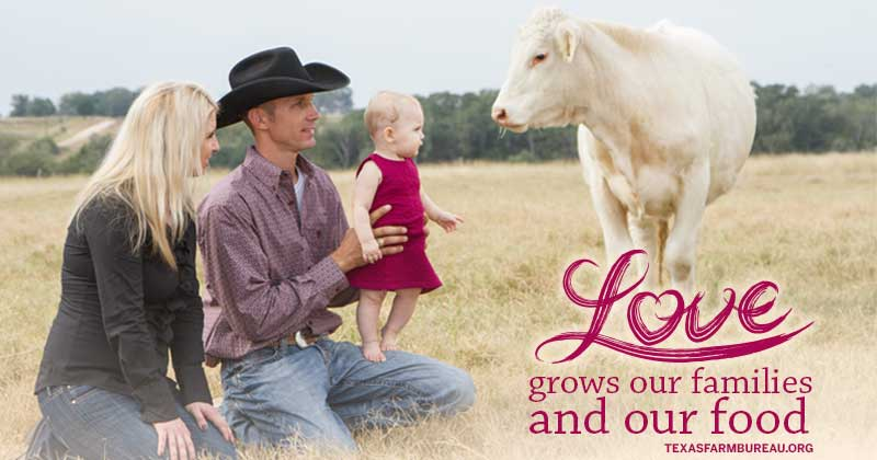 love grows our families and our food