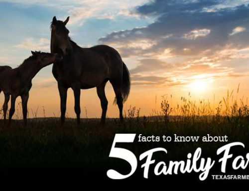 5 facts to know about family farms