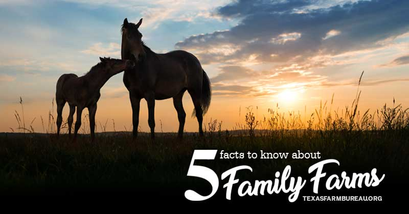 5 family farm facts to know