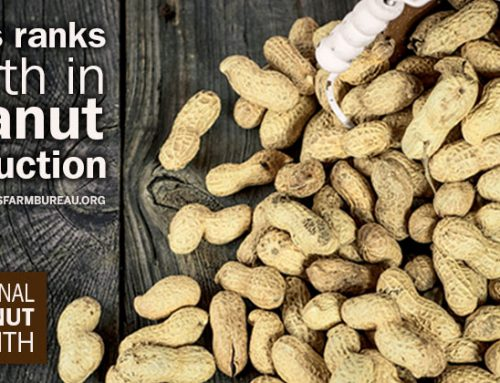 We're nuts about Texas peanuts