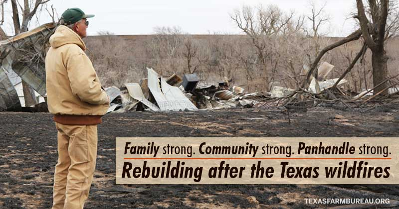 Rebuilding after the Texas wildfires