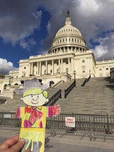 Flat Golden Fox at the U.S. Capitol