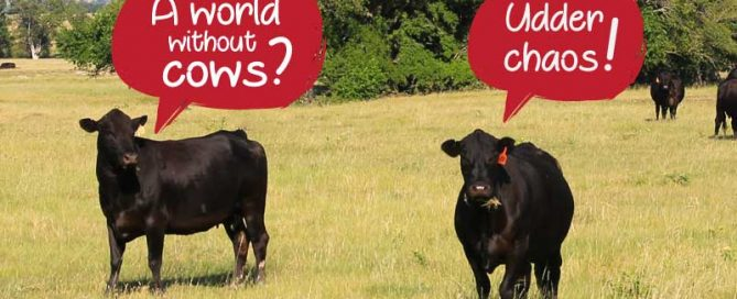 Texas brings the beef_national beef month
