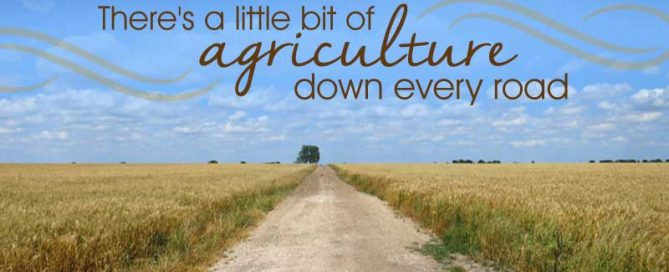 Agriculture down every road
