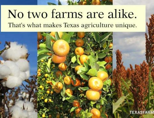 Do you support Texas farmers and ranchers?