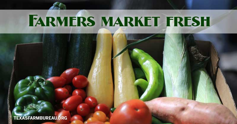 farmers market fresh