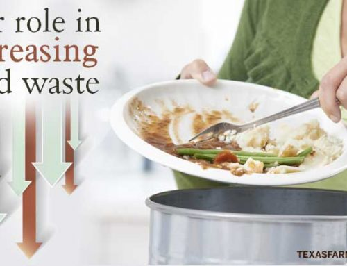 Our role in decreasing food waste