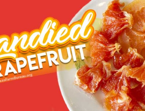 Candied Grapefruit