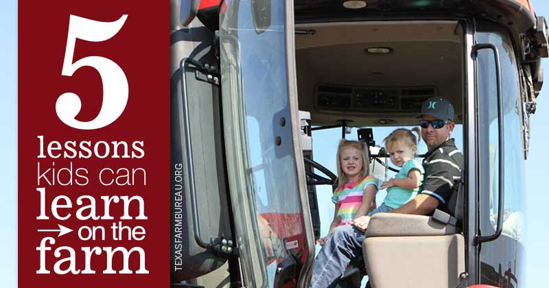 5 lessons kids learn on the farm