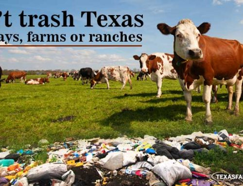 Don't trash Texas