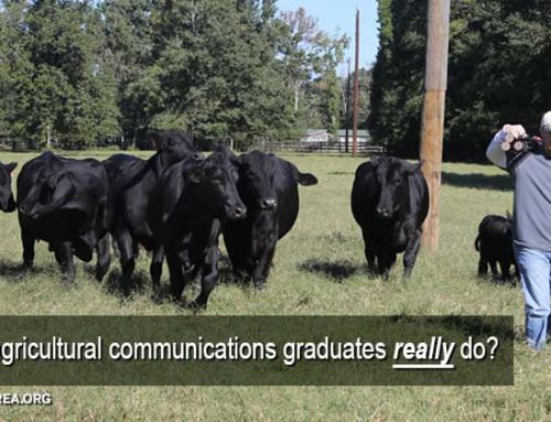 What do agricultural communications graduates do?