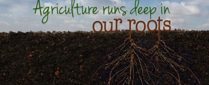 Agriculture is in our roots