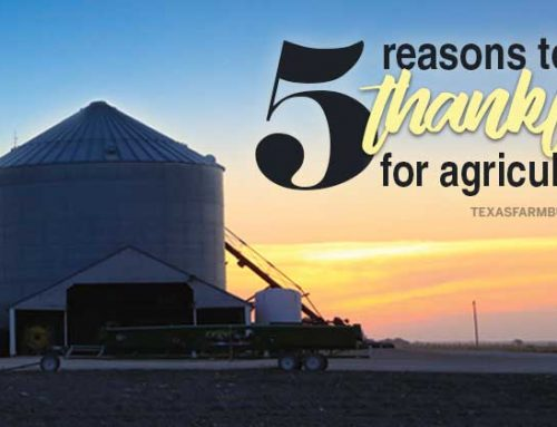 5 reasons to be thankful for agriculture