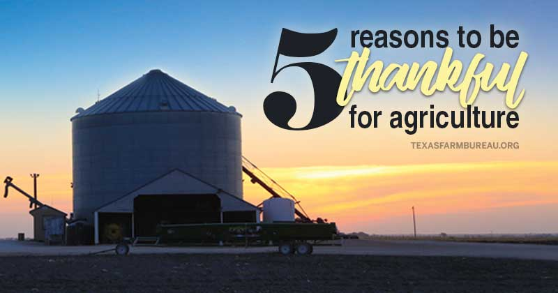 thankful for agriculture_thanksgiving