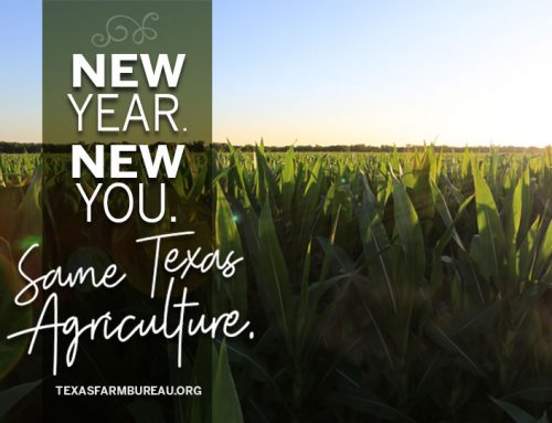 New Year. New You. Same Ag.