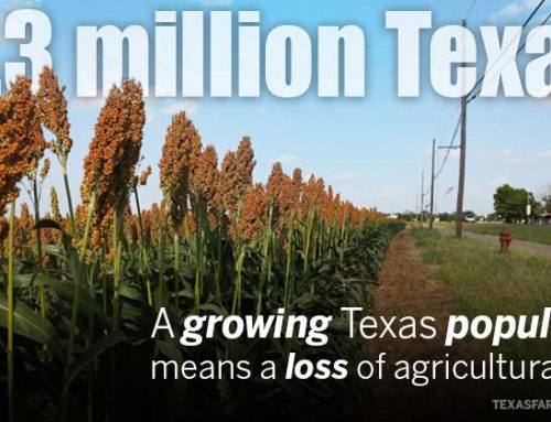 What does a growing Texas population mean for agriculture?